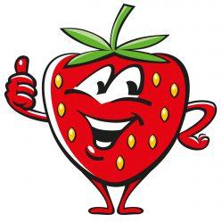 Erdbeeren Besse